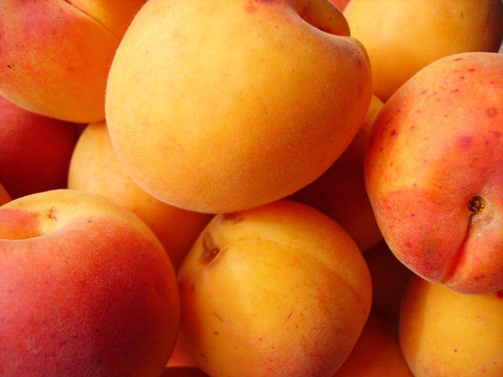 Flan aux abricots croquant d'amandes