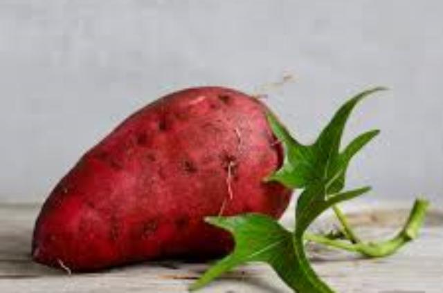 Tagliatelles de patates douces au chou kale