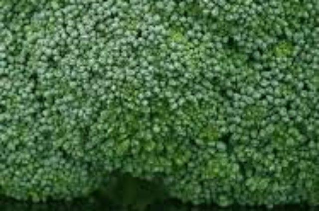 soupe detox brocolis & panais :
